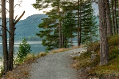 Hamaren Aktivitetspark ligger i Fyresdal. Den ligger i sentrum av kommunen med utgangspunkt i kommunehuset.